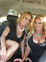 lingerie shop, Kelly Madison, Ryan Madison, Brandi Love